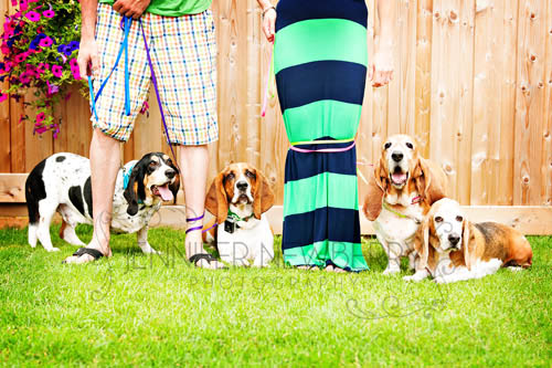 Newmarket engagement with dogs - www.jnphotography.ca @filemanager