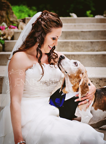 Caledon Bride and her basset hound dog by www.jnphotography.ca @filemanager