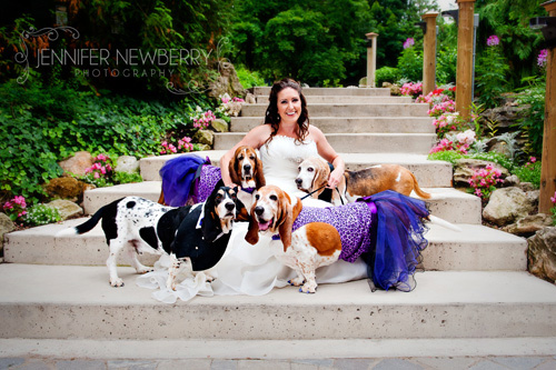 Caledon Bride and basset hound dogs by www.jnphotography.ca @filemanager