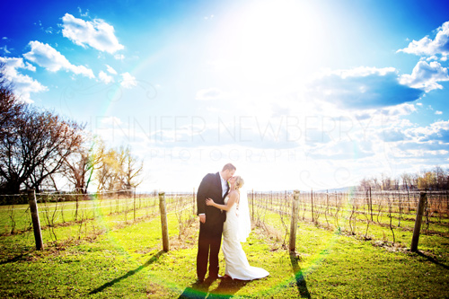Holland Marsh Vineyard wedding couple by www.jnphotography.ca @filemanager