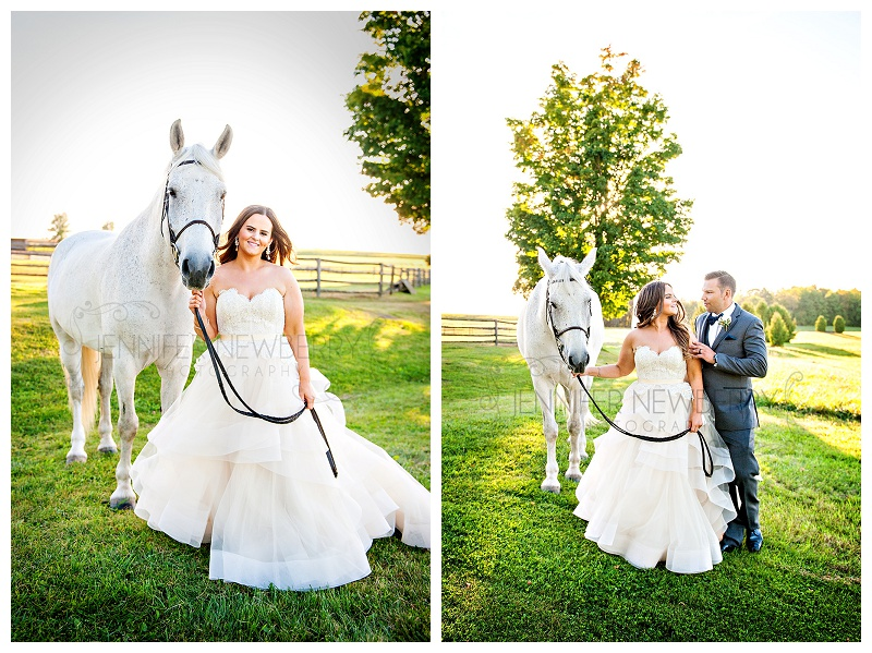 Waterstone Estates wedding, with Scout the horse! www.jnphotography.ca @filemanager