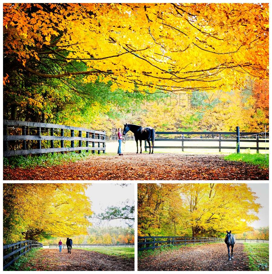 Stouffville horse photography by Stouffville family photographer www.jnphotography.ca @filemanager